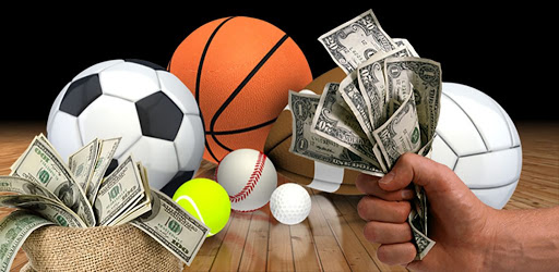 sports betting activity